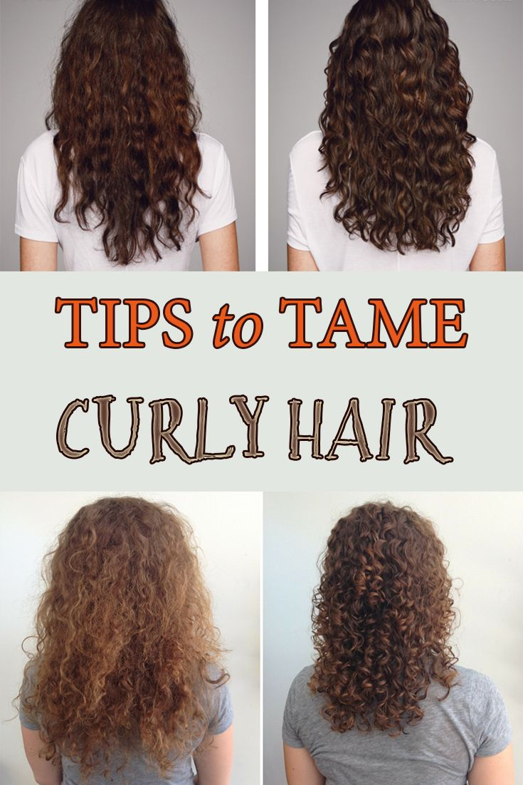 Tips To Tame Curly Hair Taming Curly Hair Curly Hair Styles Dry Curly Hair