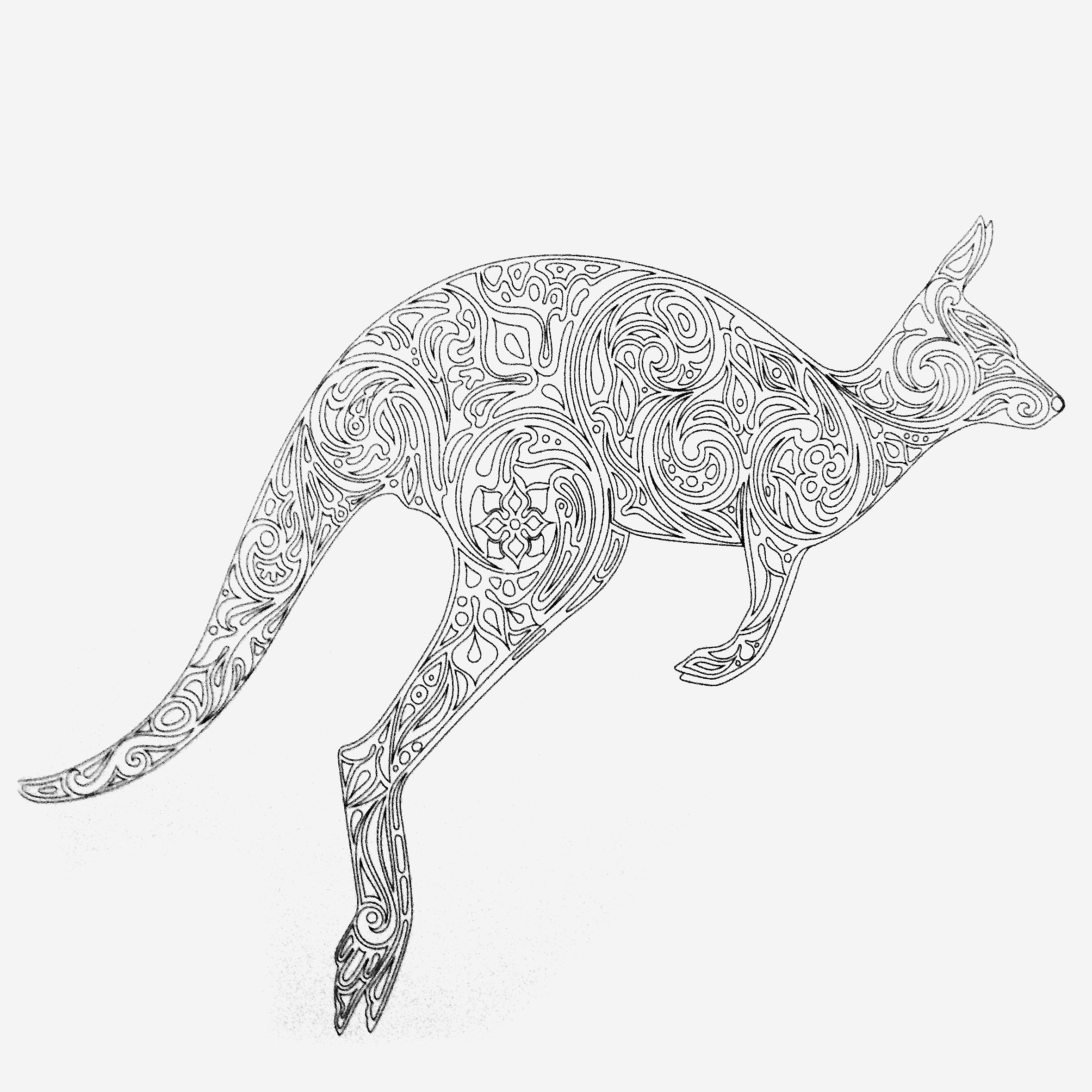 colors of nature colouring book kangaroo coloring pages