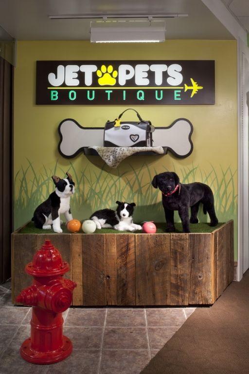 Jet Pets Boutique Denver Pet Boutique Pet Store Display Dog Store