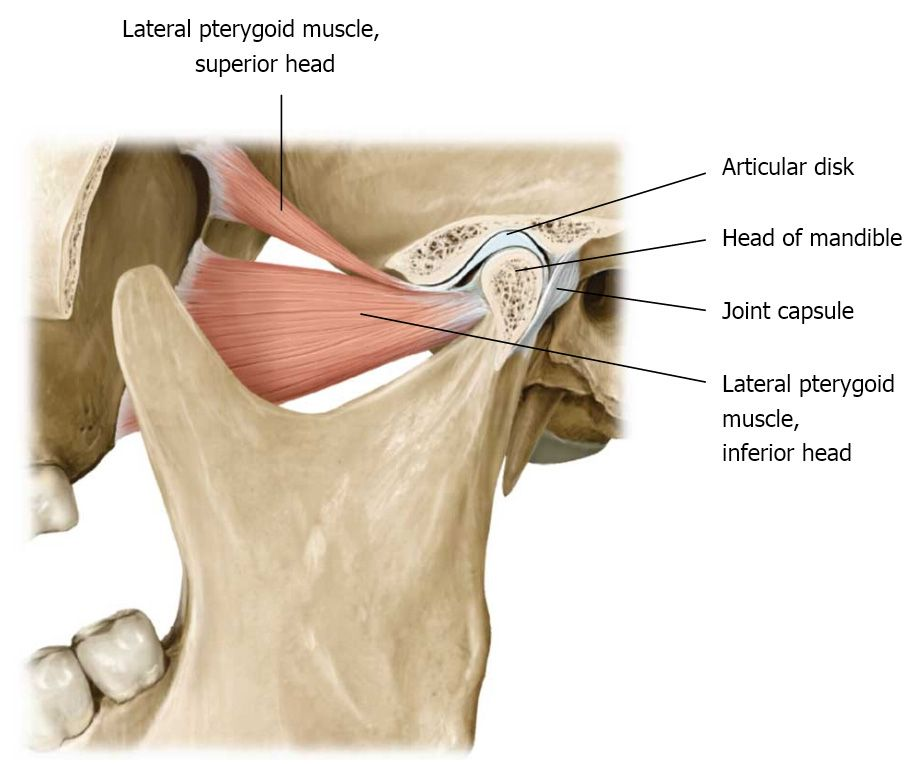 p>Temporomandibular dysfunction or TMD for short, is a condition ...