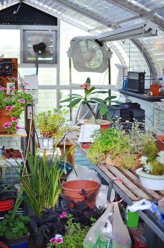 Greenhouse Design, Pictures, Remodel, Decor and Ideas. //www ... on pretty wildlife, pretty barn, pretty water, pretty spring, pretty lawn, pretty green, pretty forest, pretty roses, pretty porch, pretty house, pretty church, pretty shed,