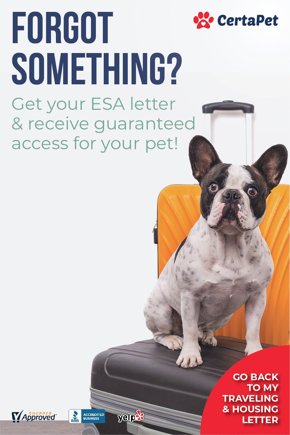 Your Housing & Travel Letter Is Waiting! Certapet