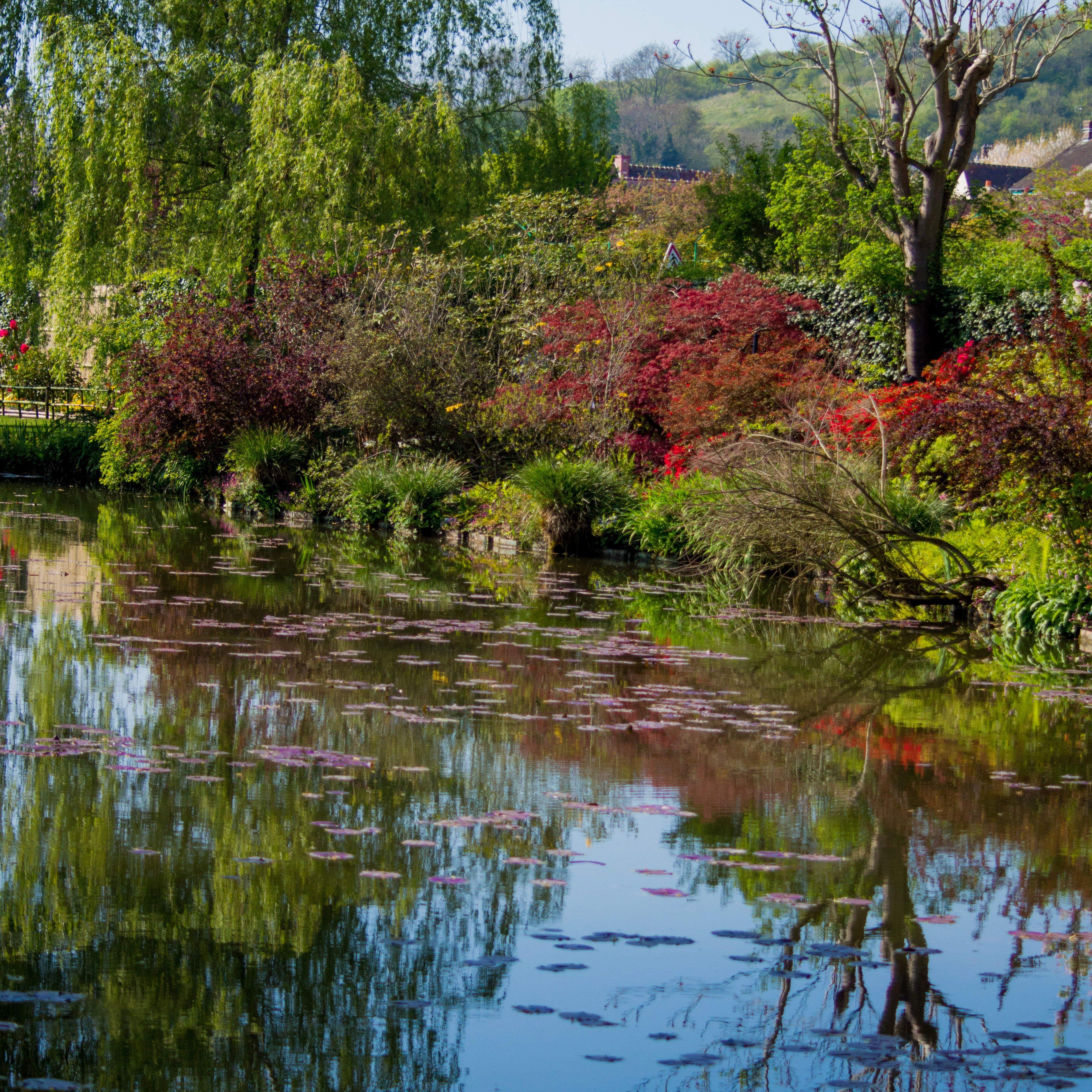 Photo Les jardins de Claude Monet | Monet, Claude monet et ...