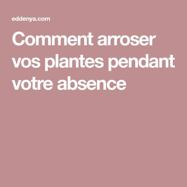 Comment Arroser Vos Plantes Pendant Votre Absence Astuce Jardinage
