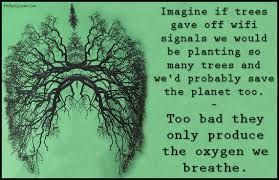 Image result for indian proverb only when the last tree