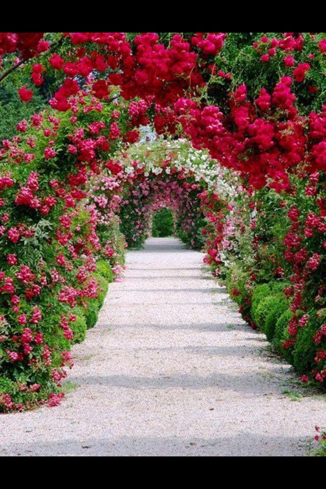 Flowers Paisajes Pinterest Jardines, Jardinería y Jardín - paisajes jardines
