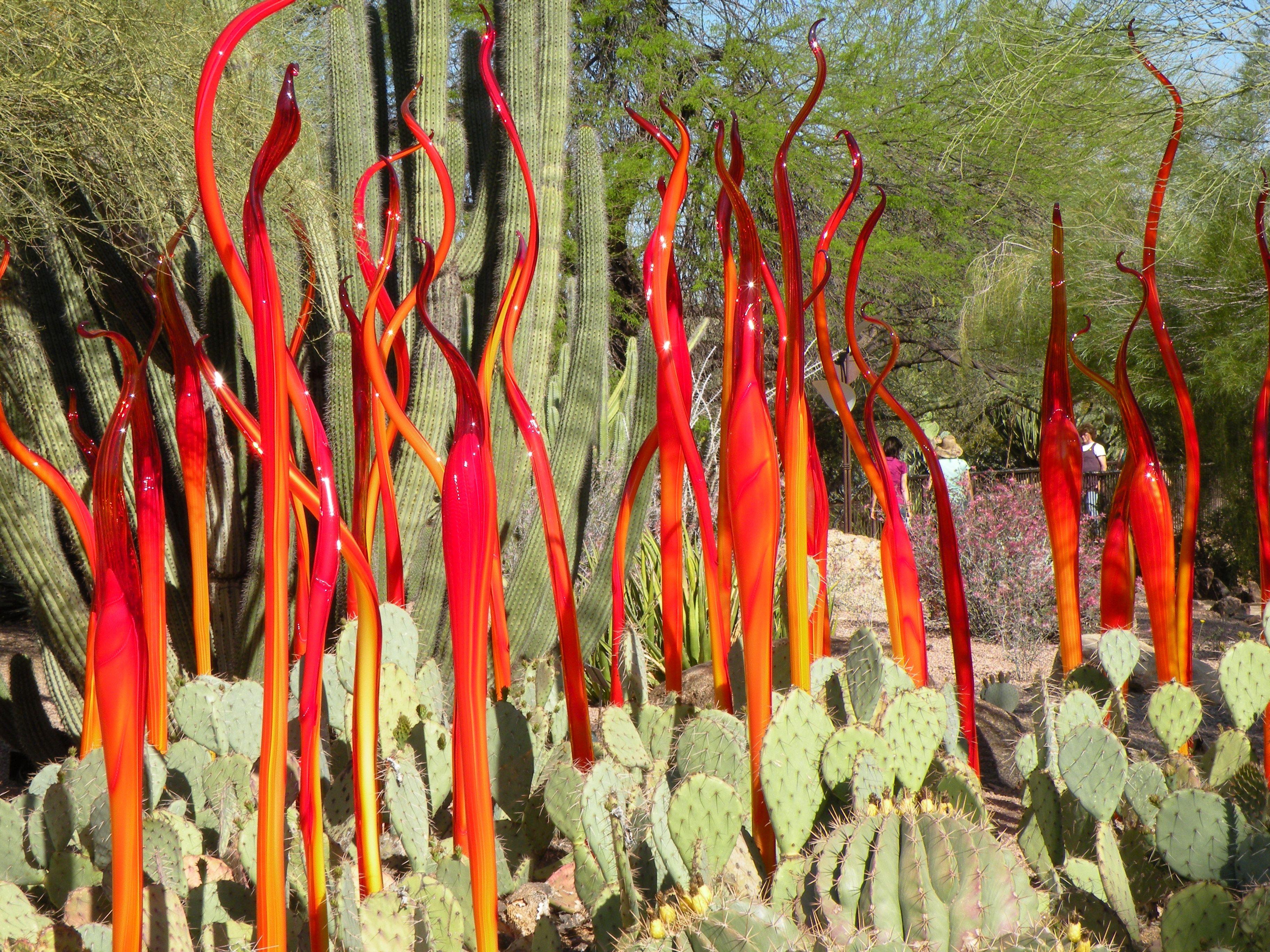Fire- Chihuly, Phoenix Botanical Gardens