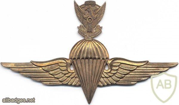 SUDAN Parachutist wings
