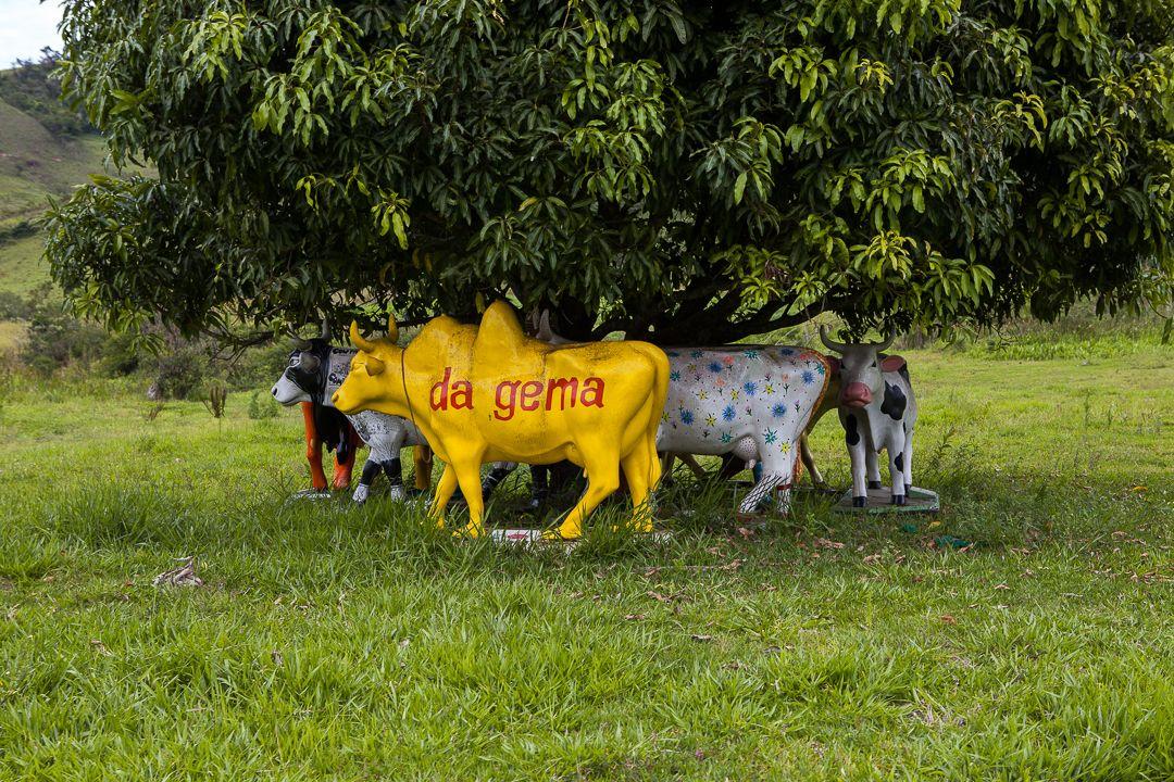 Reserva do Ibitipoca