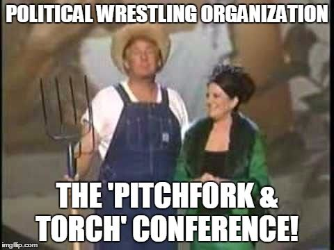 p.W.o.: POLITICAL WRESTLING ORGANIZATION
