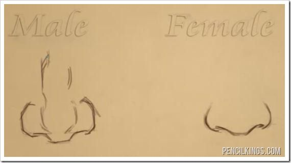 How To Draw A Nose The Difference Between Male And Female Noses Nose Drawing Anime Nose Drawing Tutorial