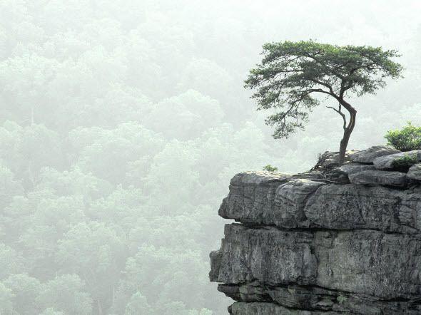 Best Nature Hd Wallpaper Pack Landschaftsfotos
