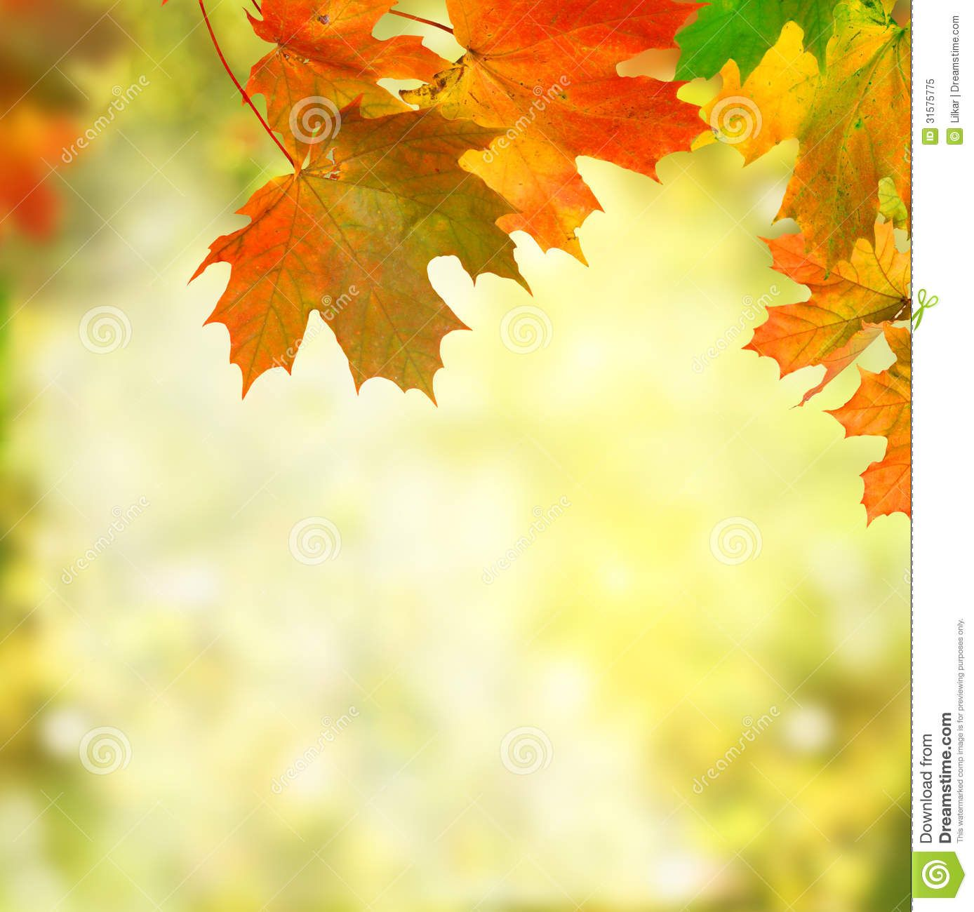 Fall Wallpaper Images Free: Free Fall Background Pictures