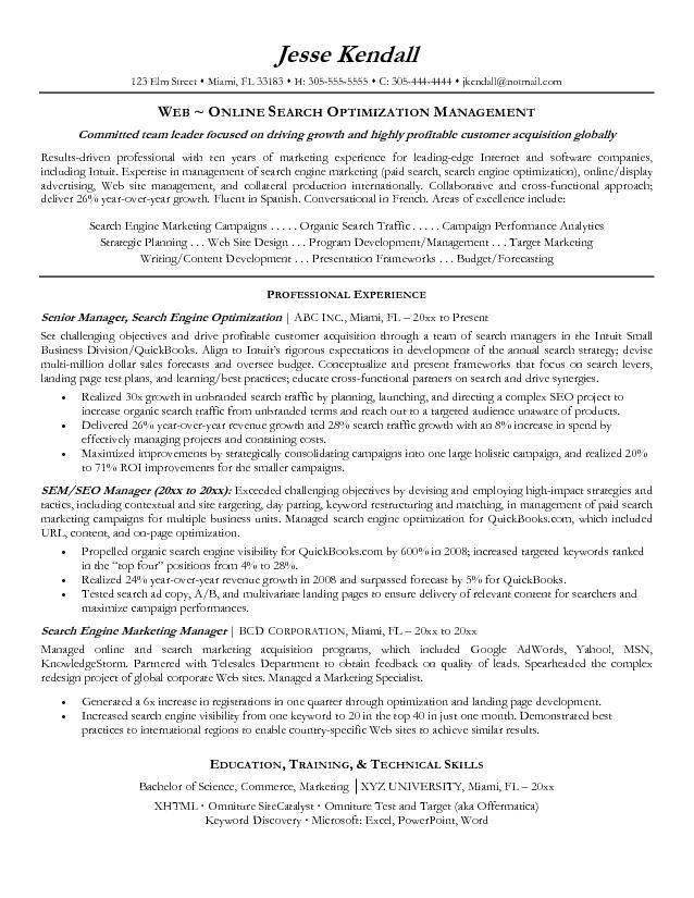 SEO Manager Zusammenfassung - internet marketing manager - web marketing manager sample resume