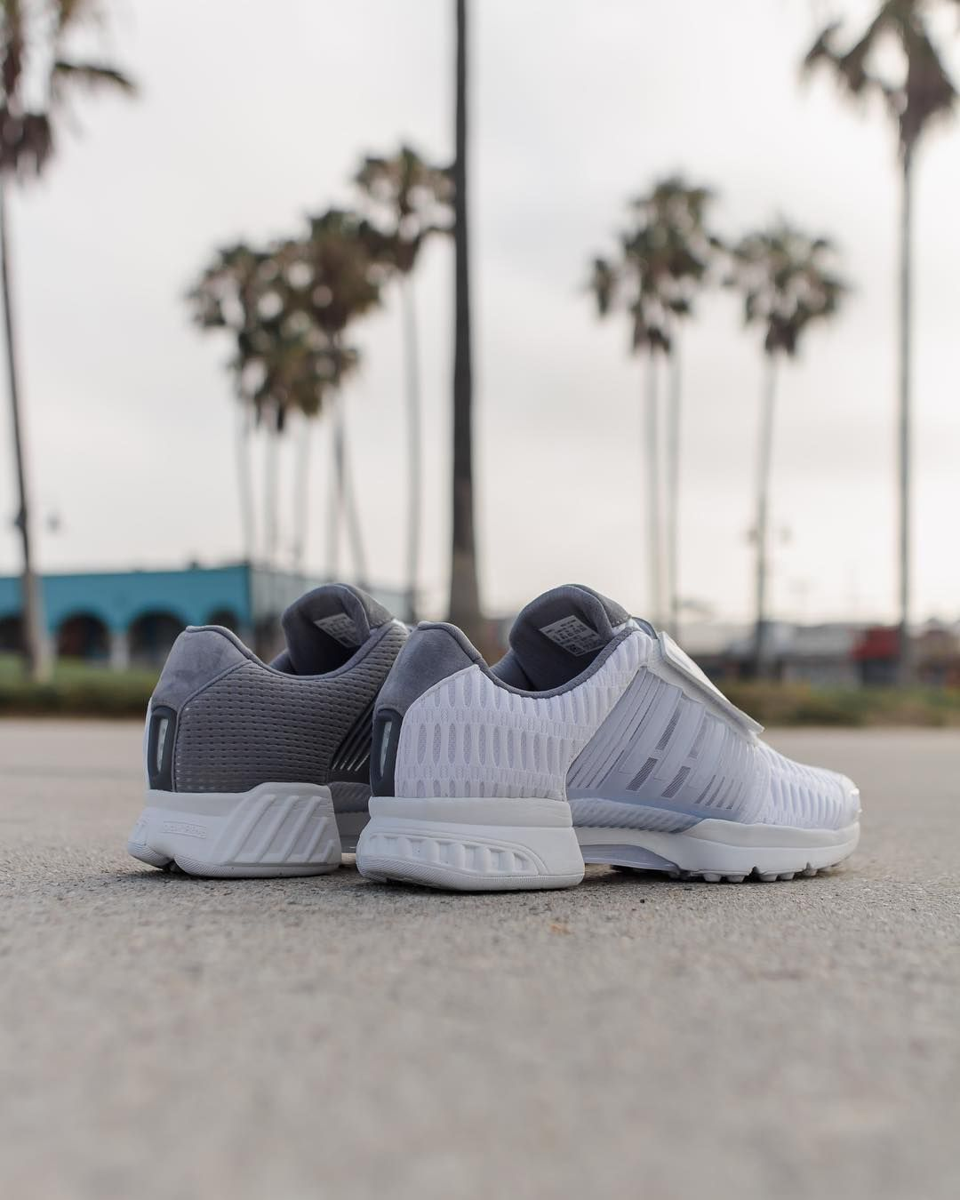 low priced 28ef2 8d5df We celebrate the city of Los Angeles with an adidas Originals Flagship  Store exclusive  CLIMACOOL