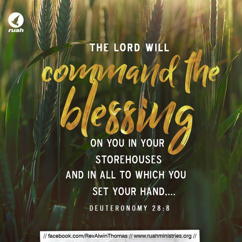 Deuteronomy 28 8 Nkjv Dailybreath Ruah Ruahchurch Promiseverse Command Blessing Storehouse Bible Verse Memorization Bible Words Tamil Bible Words
