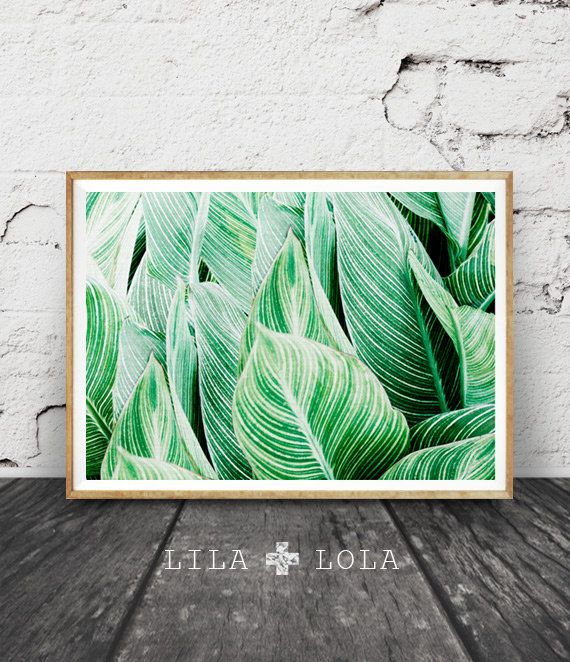Nice Tropical Leaf Print Tropical Art Plant Print By Lilandlola On Etsy
