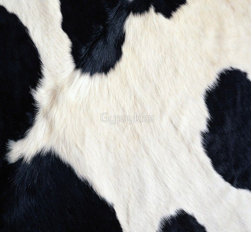 Cowhide Black And White Art Print By Gypsykiss Cow Print Wallpaper Black And White White Art