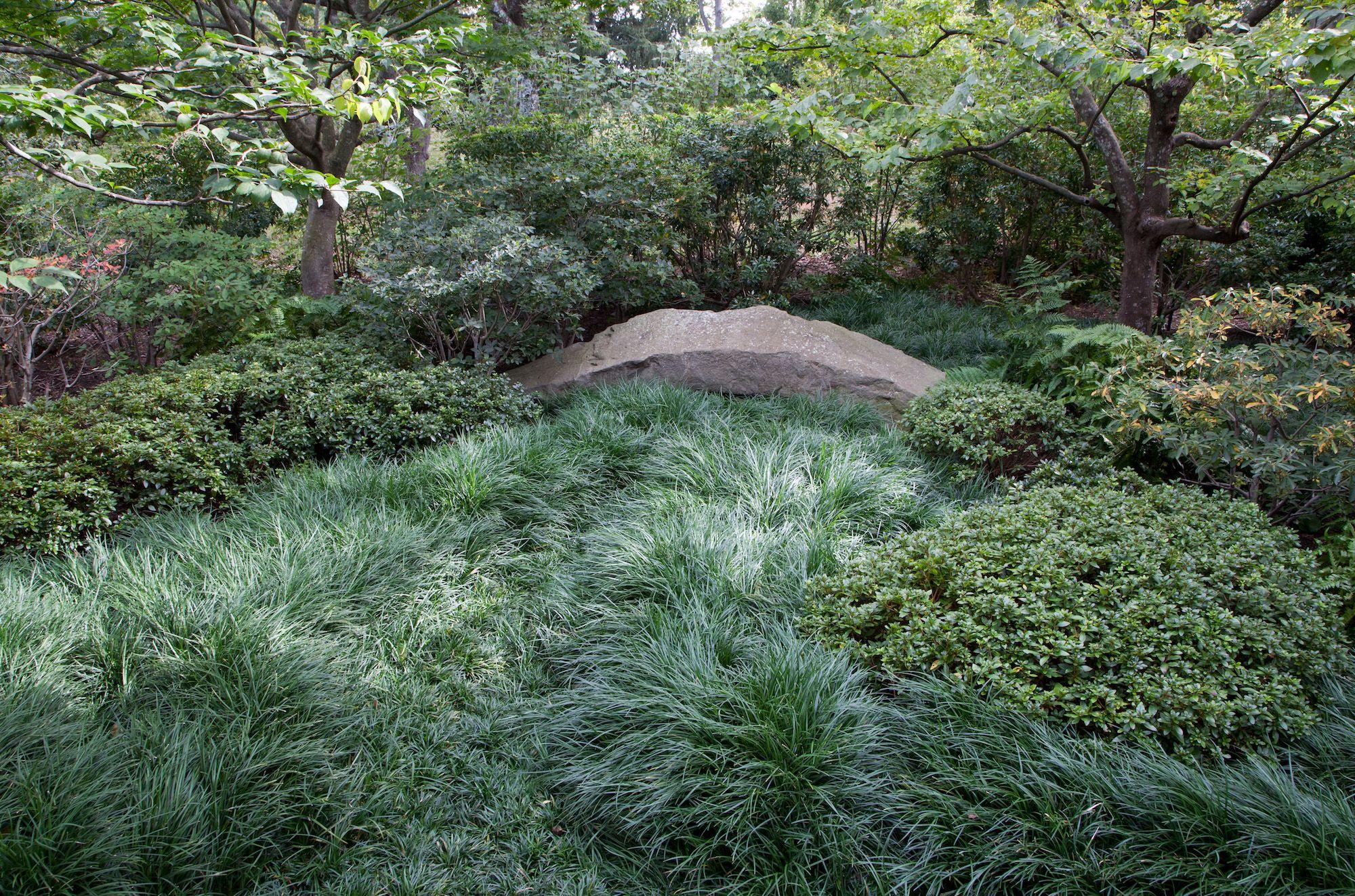 Designer Visit A Garden Inspired By Japan In Westchester County New York Gardenista Asian Garden Front Gardens Japanese Garden