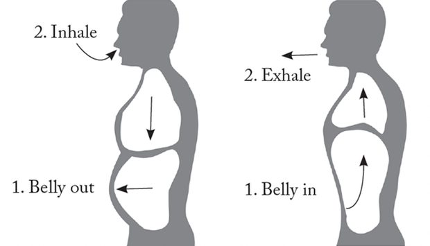 Diaphragmatic Breathing | Diaphragmatic breathing, Belly breathing, Singing  techniques