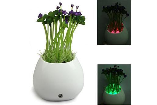 Planta led de noche.  Enchufa esta planta y disfruta de una decoración natural para tu hogar que te impresionará cuando la veas iluminada por la noche.  Dale un toque zen y natural a tu hogar.  Planta led de noche.
