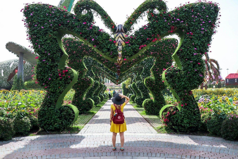22 Reasons To Visit The Dubai Miracle Garden dubaigarden