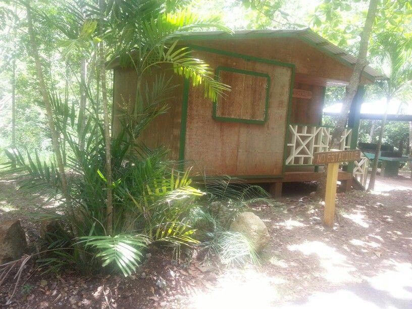 Casitas para pernoctar bosque susua sabana grande puerto - Casitas del bosque ...