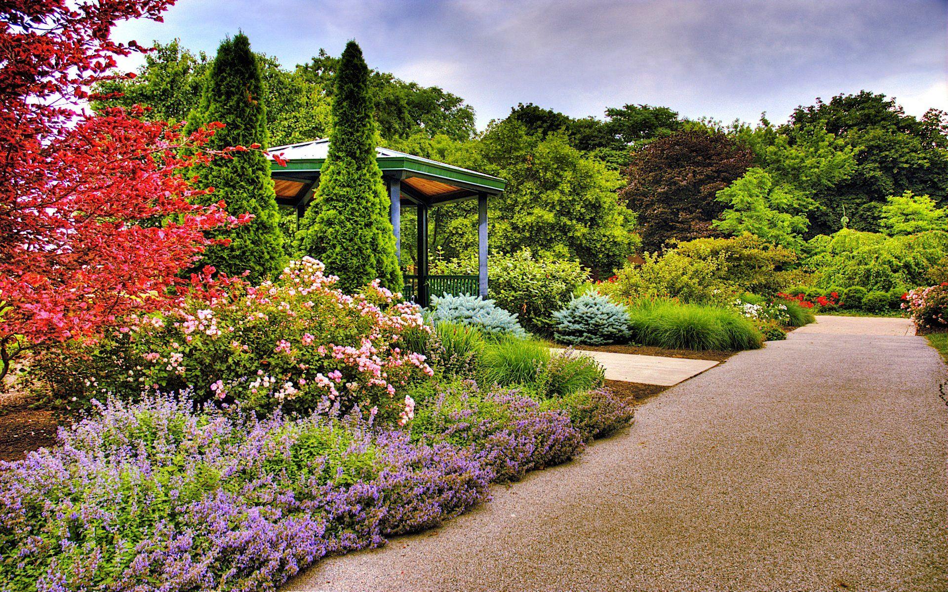Fashion In The Garden Beautiful Flowers Garden Garden Images Spring Wallpaper