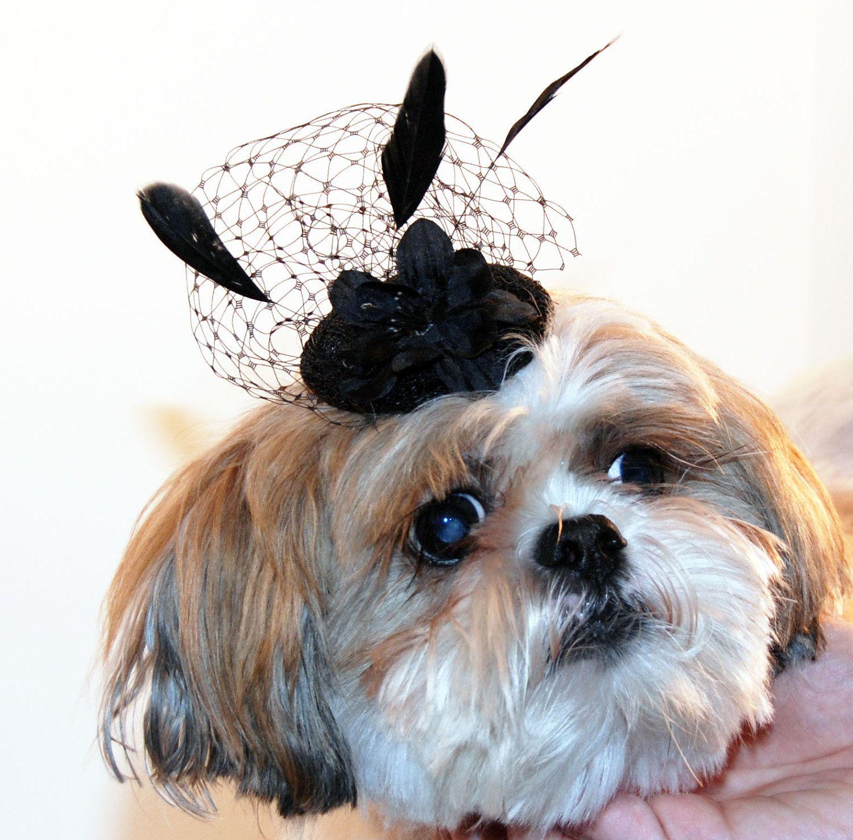 Black Fascinator Hat for Dogs - Dog Wedding Hat - Dog Bridal Hat - Dog  Cocktail Hat.  25.00 a72fdf3004b