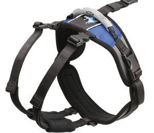Choosing The Correct Hip Lift Dog Harness Dog Design Hip Lifts