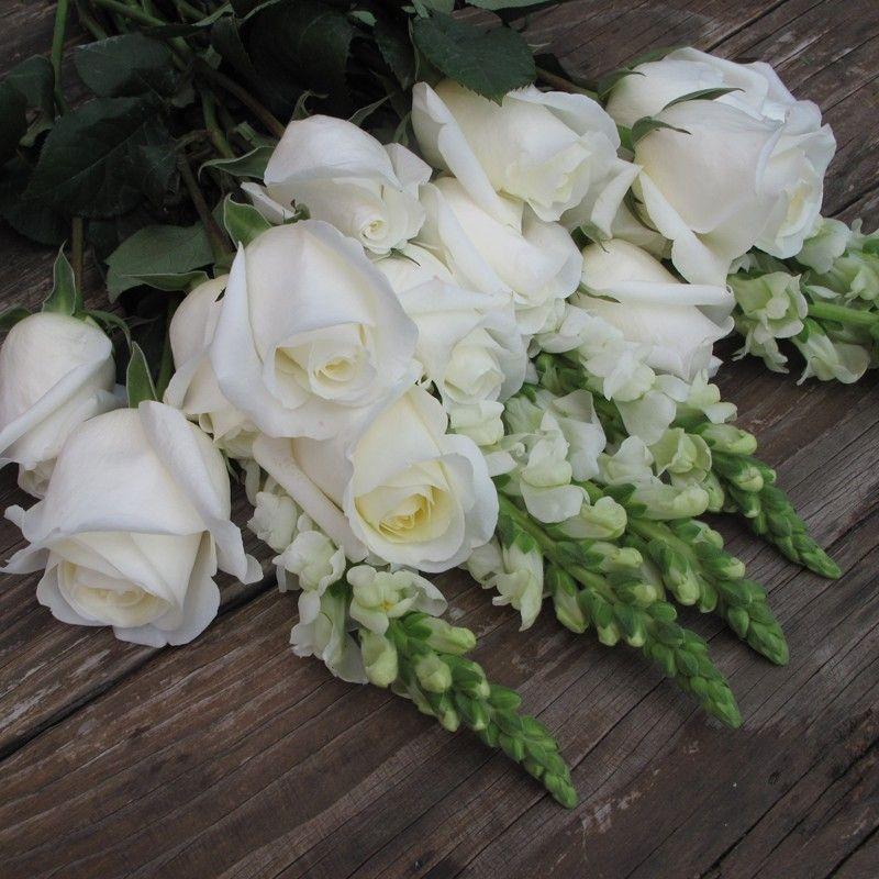 white roses & snapdragon <3