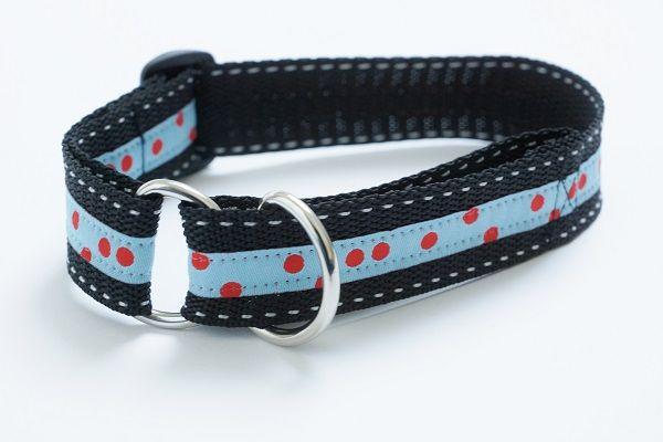 DIY: Hundehalsbänder | Halsband, Tierschutz und Gefangen