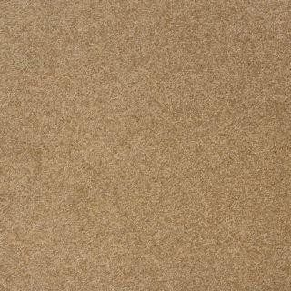 Http Procarpetsupply Com Milliken Legato Embrace Muffin Carpet