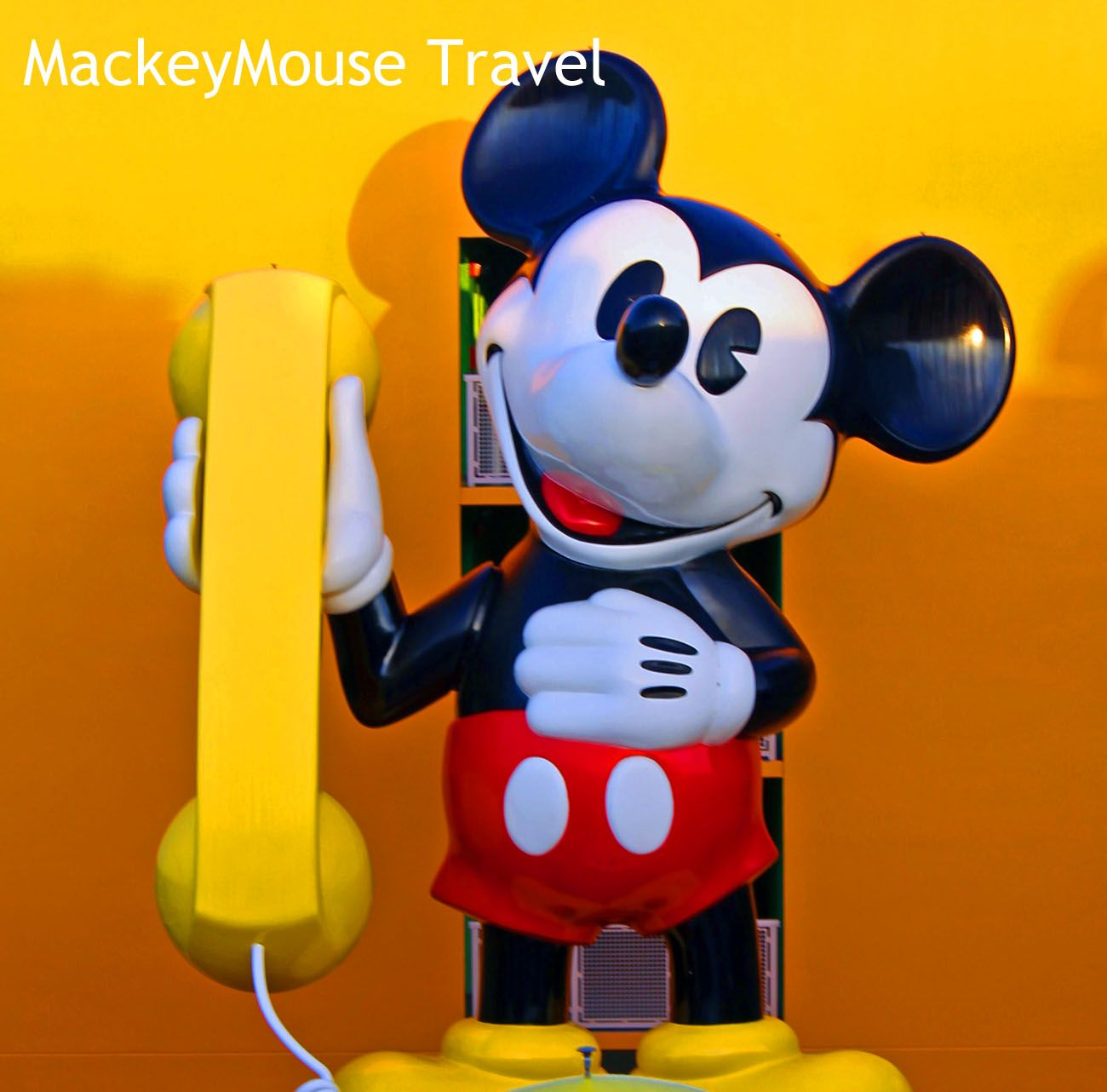 Want the BEST help with your Disney planning? Look no further! MackeyMouse Travel is ready to get started!! mackeymousetravel@yahoo.com or www.mackeymousetravel.com