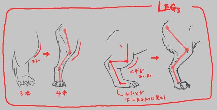 Monster Anatomy おしゃれまとめの人気アイデア Pinterest シラトリウム合金 アートレッスン 動物の描き方 コミティア
