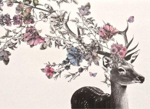 63c0233329724 pretty flowers Sketch floral deer antlers | Tattoo insp | Art, Deer ...