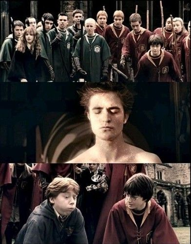 The Feeling When Seeing Edward Xd Harry Potter Vs Twilight Harry Potter Jokes Harry Potter