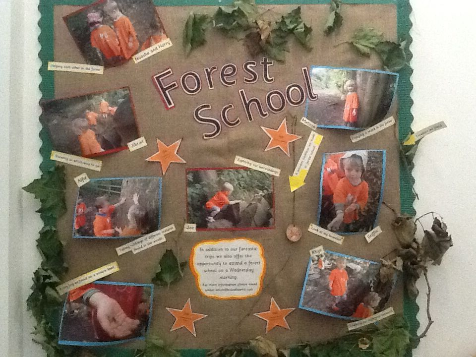 Forest School Display Forest School Activities Forest