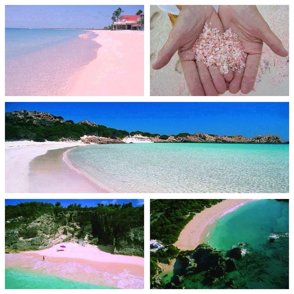 Seychelles Beach: Pink Sand Beaches (Bahamas, Bermuda, The Seychelles