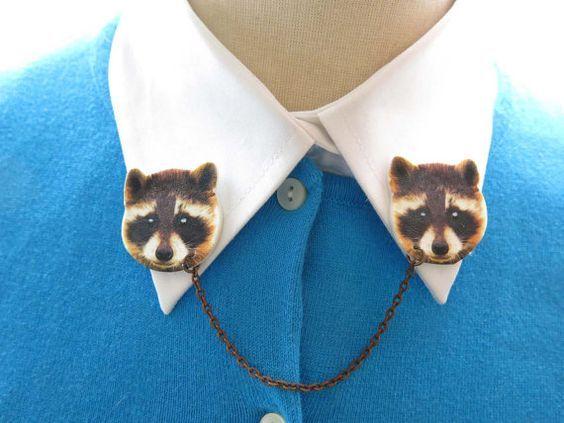 Pin by Sammie Russell 3 on Raccoon Pet raccoon, Animal