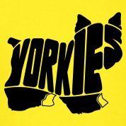 Yorkie Dog Art T-Shirts