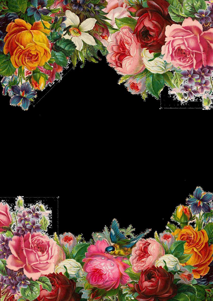 Бесплатные фото на Pixabay Цветок, Роуз, Кадр, Сбор in