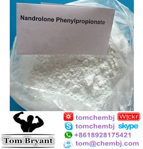 Nandrolone phenylpropionate is one of the most popular