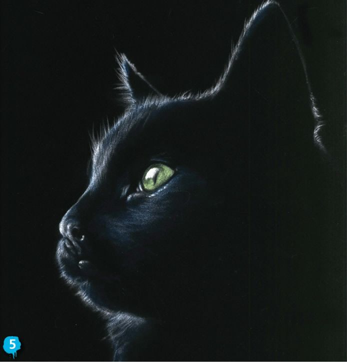 Back To Black With Vic Bearcroft Saa Paint Magazine Cat Art