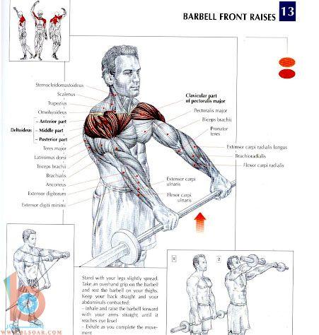 بالصور تمارين تقوية عضلات الظهر