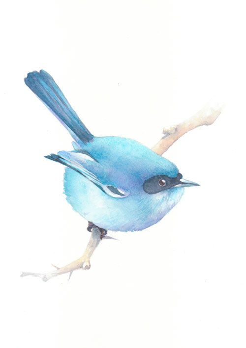 Bird, animal, bird art, bird painting, Watercolor, original watercolor painting,  wall art decor, Splendid Fairy Wren-watercolor painting. $98.00, via Etsy.