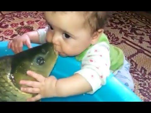 فيديو كوميدي طفل جميل يلعب مع سمكة مضحك جدا Funny Babies Funny Whatsapp Videos Human Babies