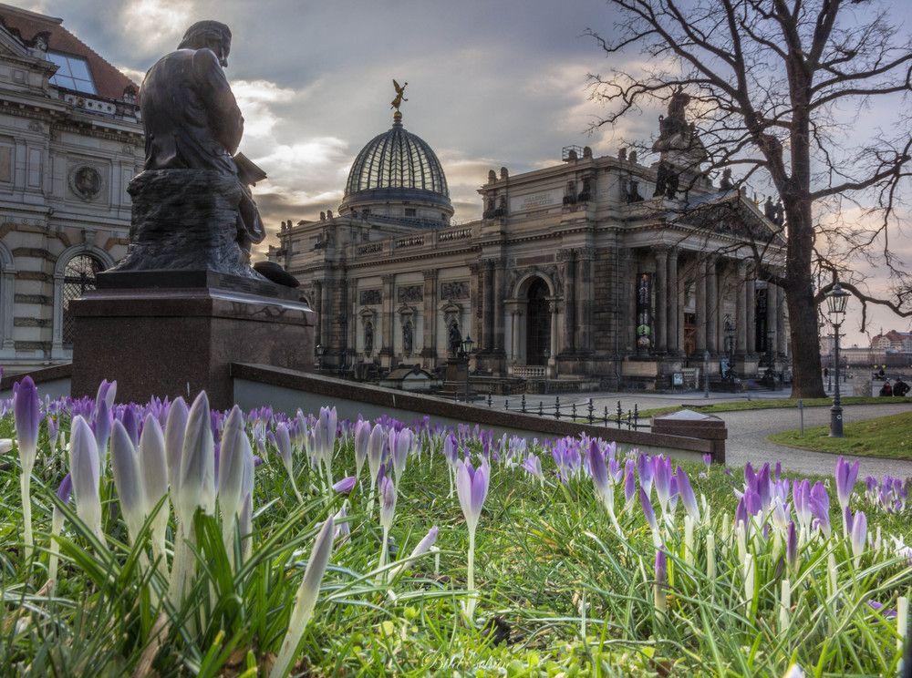 Fruhling Im Februar Auf Der Bruhlschen Terrasse Stadtereisen Dresden Dresden Stadte Reise