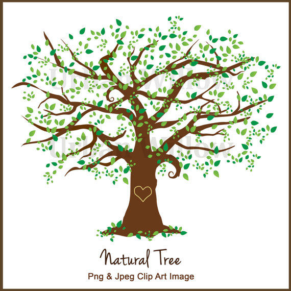 Beautiful Tree Clipart Design, Family Tree, Clipart Tall