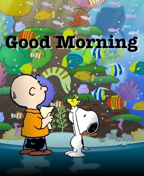 Good Morning Charlie Brown Snoopy And Woodstock Standing In Front Of A Giant Aquarium Good Morning Snoopy Good Morning Meme Snoopy